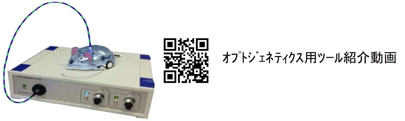 starter_02_qr_2