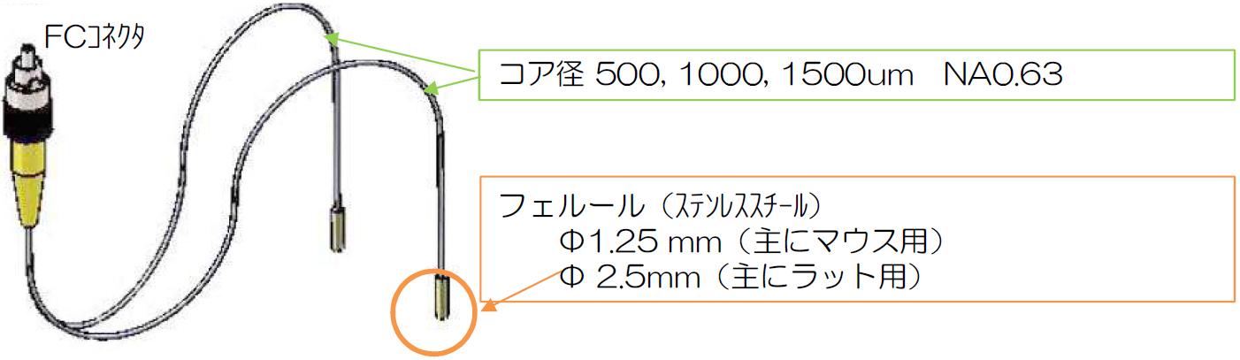 starter_05_fiber_pic